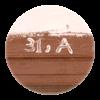 Cell 31 A logo