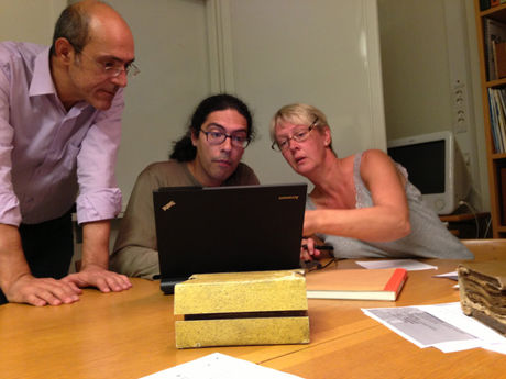 Explaining fields of the survey form